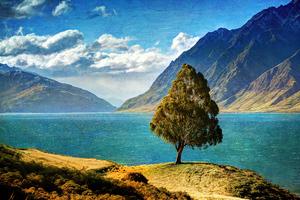 Tree Mountain Glacial Lake 4k Wallpaper