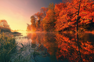 Trees Fall Reflection Autumn 4k Wallpaper