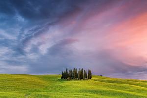 Tuscany Field In Italy