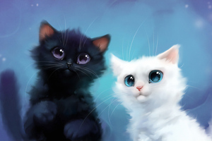 Two Kittens Wallpaper