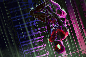 Ultimate Spider Man 4k