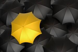 Umbrella Monochrome Yellow Digital Art 5k
