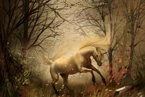 Unicorn In Dreams Wallpaper