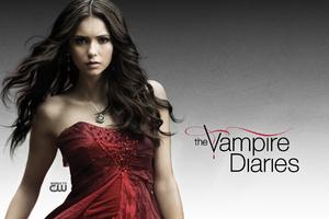 Vampire Diaries Nina Dobrev Wallpaper