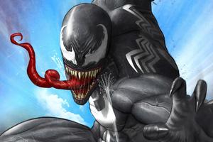 Venom And Spider Wallpaper