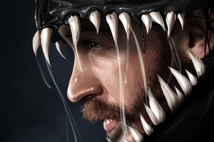 Venom Artworks 2018