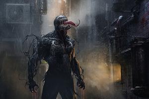 Venom In Rain Wallpaper