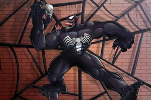 Venom In Web