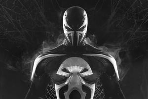Venom X Punisher Wallpaper
