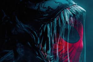 Venom X Spiderman 4k