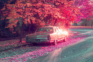 Vintage Car Parked Under Tree Covered By Flowers Wallpaper