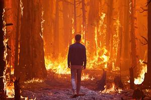 Walking In Forest Fire 4k