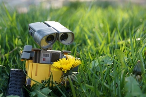 Wall E Robot Wallpaper