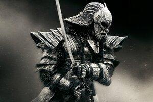 Warrior In Ronin Wallpaper