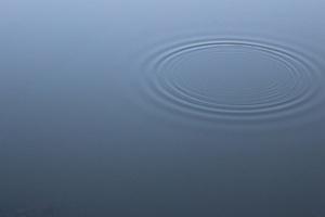 Water Dribble 5k