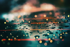 Water Drops Daylight Macro Wallpaper