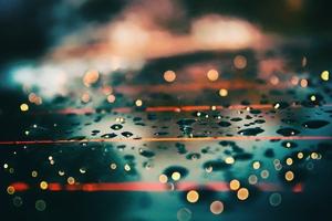 Water Drops Daylight Macro Wallpaper