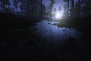 Water Stream Night Forest 4k