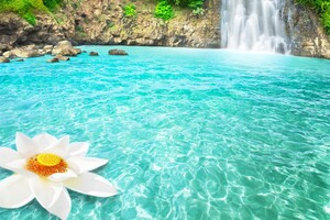 Waterfall Flowers Wallpaper