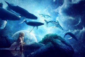 Whales Dream Wallpaper