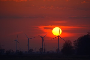 Wind Turbines Evening Sunlight Energy Sunset
