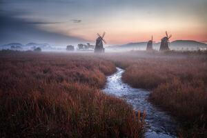 Windmill Landcape