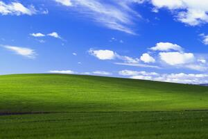 Windows Xp Bliss 4k Wallpaper