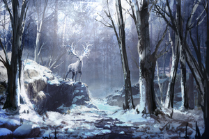 Winter Forest Reindeer 4k
