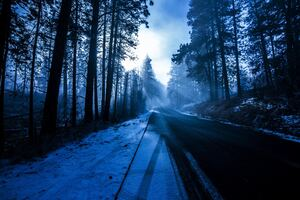 Winter Road Nature 5k Wallpaper