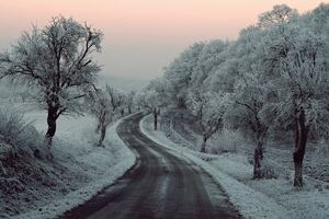 Winter Road Snow Frozen Trees On Sides 5k Wallpaper
