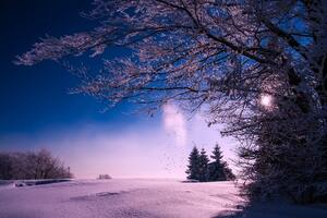 Winter Snow Sunset Dusk Sky Clouds Landscape