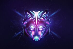 Wolf Colorful Minimalism