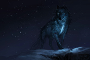 Wolf Drawing Wallpaper