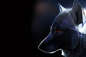 Wolf Glowing Eyes 4k Wallpaper