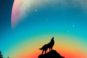 Wolf Howling Minimal 4k Wallpaper