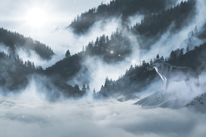 Wolf In Snow 5k Wallpaper
