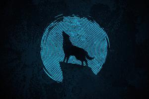 Wolf Make It 4k Wallpaper