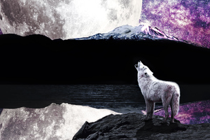 Wolf Moon River