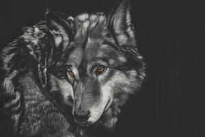Wolf Painting 4k Wallpaper
