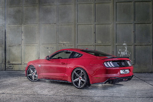 Wolf Racing Ford Mustang 2019 Rear