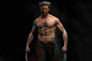 Wolverine 4k Hugh Jackman Wallpaper