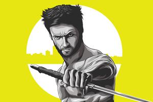 Wolverine 4k Illustration