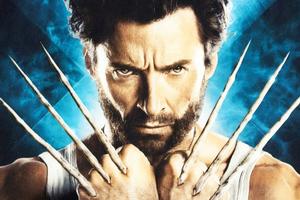 Wolverine 4k Wallpaper