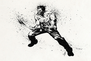 Wolverine 4k Sketch Art