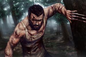 Wolverine 4k2020