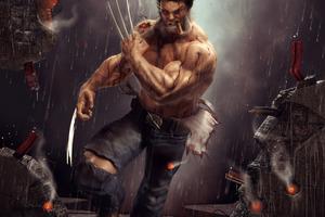 Wolverine Artwork 4k