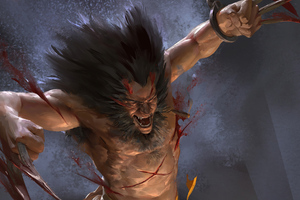 Wolverine Coming Claws Wallpaper