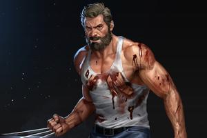 Wolverine Hugh 4k