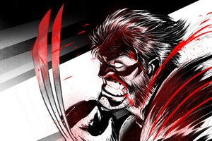 Wolverine Illustration 4k