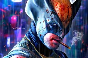 Wolverine Illustration